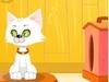 Домашний котик играть